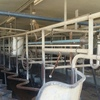 Fully kitted out Herringbone Dairy For Sale