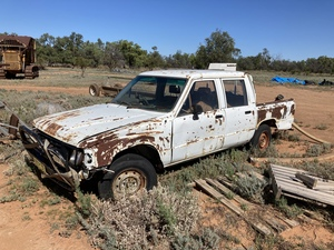 Paddock Basher. Offers