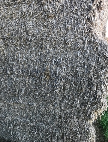 Pea Straw 8x4x3 - 45 x 480 KG Approx Bales + Freight