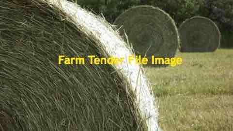 Triticale Hay Rolls