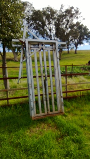 For Sale One Cattle Head Bail $440 gst incl.
