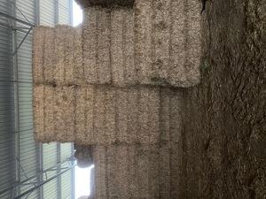 RYE GRASS HAY 8X4X3 SHEDDED