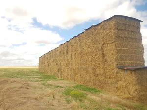 Ryegrass Hay 580kg 8x4x3 HD Bales