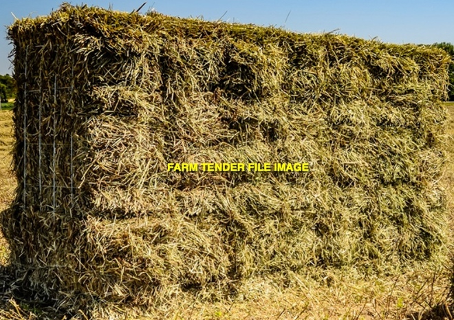 Sub Clover Hay Small Bales in Barron Packs