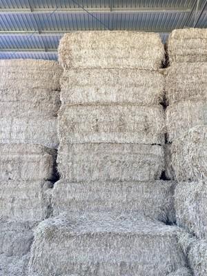 Wheat Hay 8x4x3