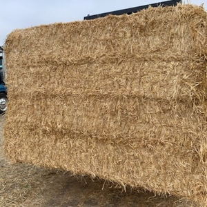 400mt Barley Straw 8x4x3 Bales (Header Tails)