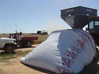Ipesa Grain Bags 10 Foot X 75m