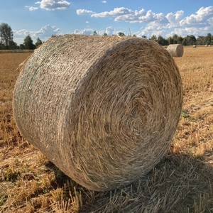 Oaten Hay 5x4 Round Bale