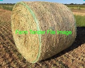 200mt Wheaten Hay 5x4 Round Bales