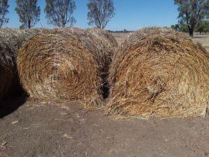 Oaten Hay 5x4 Round Bales (New Season)