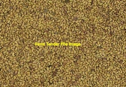 Lucerne seed VNS