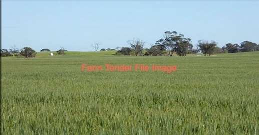 WANTED Cropping Farmland to Lease