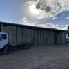 Petrel Wheat Hay
