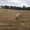 Oaten/Pasture Hay 5x4 Round Bales