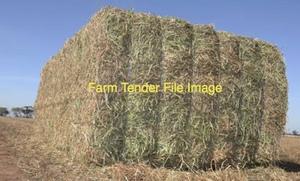 New seasons Wheaten & Vetch Hay 650kg 8x4x3 Bales