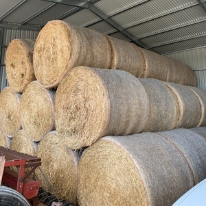 Oaten Hay 420kg 5x4 Rounds & Small Squares