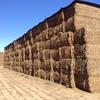 200mt Vetch Hay 600kg 8x4x3 Bales (New Season)