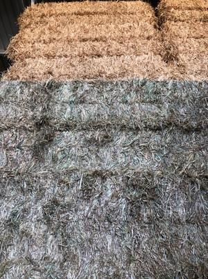 200mt Wheaten Hay 8x4x3 Bales