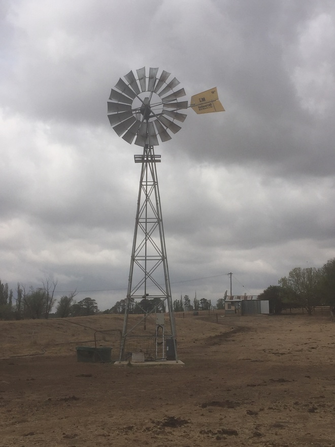 Under Auction - (A135) - 10 Ft Yellowtail Windmill - 2% + GST Buyers Premium On All Lots