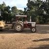 David Brown Tractor 885