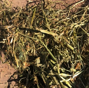 clover/oat hay