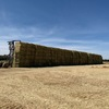 High quality organic USDA NOP hay