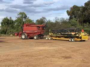 Case 2380 with 36' Honeybee Front on Coolamon Contractor Trailer