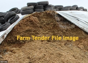 Pasture Silage in Bunker   300 mt