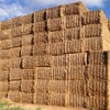 Medic Hay 8x4x3 400 x 530 KG Approx Delivered Price Sale Area.