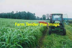 310 x Forage Sorghum 340kg 5x4 Rounds