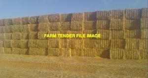 800mt Wheaten Straw 8x4x3 Bales Windrowed