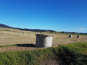 Large round pasture grass/hay bales silage.