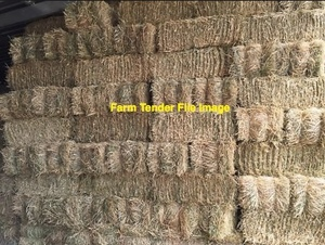 500 x Meadow Hay Small Squares