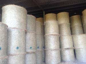100 Rhodes Grass Hay