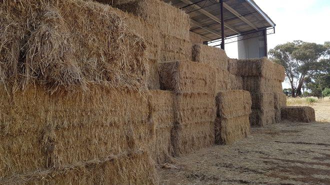 Organic oaten/ryegrass hay.