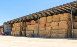33mt Wheaten Hay 550kg 8x4x3 Bales