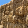 8X4X3 big squares - clover and rye grass hay