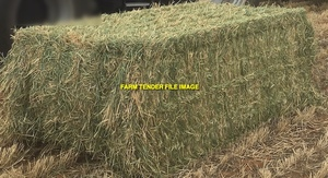 100mt Barley & Rye Hay 600kg 8x4x3 Bales