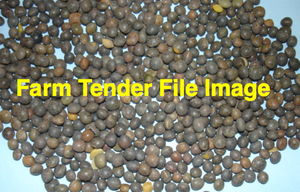 Sequal Lucerne Seed