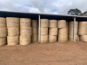 High Quality Wheaten & Barley Hay for sale