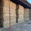 80mt Wheaten Rye Vetch Hay 600kg 8x4x3 Bales