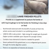 Lamb Feed Pellets