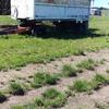 Single Axle tipper Trailer with Farm Dolly