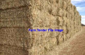 Header Trailed Barley Straw 8x4x3 Bales