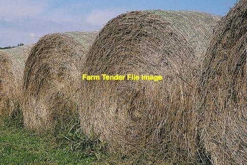 400 x Pasture Hay 5x4 Rolls (Adelaide Hills) Old Season