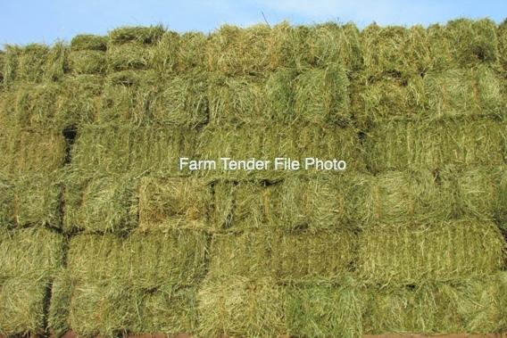 Headland Hay Small Square Bales