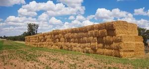 Barley Straw 8x4x3