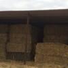 Organic Pasture Hay