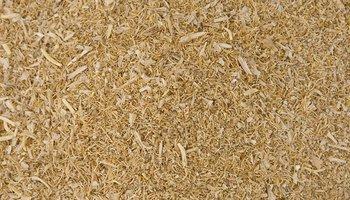 High Protein Malt Combings (Stockfeed)