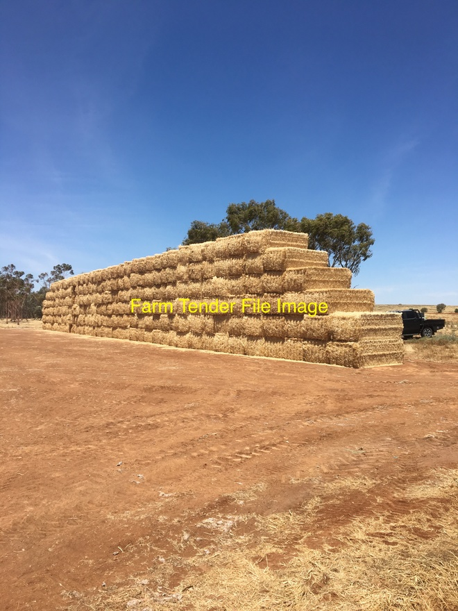 Wheaten Hay. 8x4x4